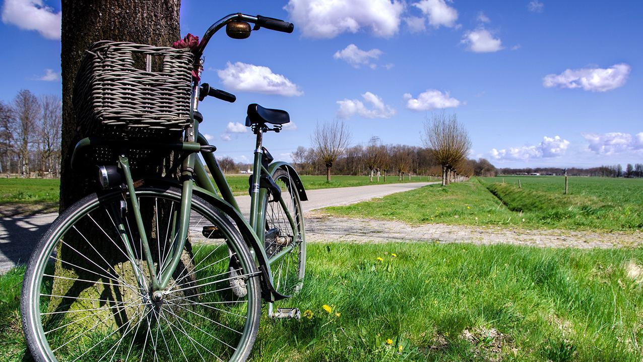 Hiking & cycling packages